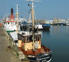 Duin & Haven fietstocht: deze fietsroute voert langs de mooiste plekjes in en om Bloemendaal. De gids neemt je ook mee naar de bijzondere sfeer van de havens in IJmuiden met de lekkerste vis.