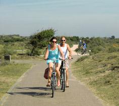 DuneBiking groepsctiviteiten: een fietstocht op maat, speciale workshop of andere groepsactiviteit. Voor een vrijgezellendag, familie uitje of dagje uit met vrienden. Het kan bij DuneBiking.